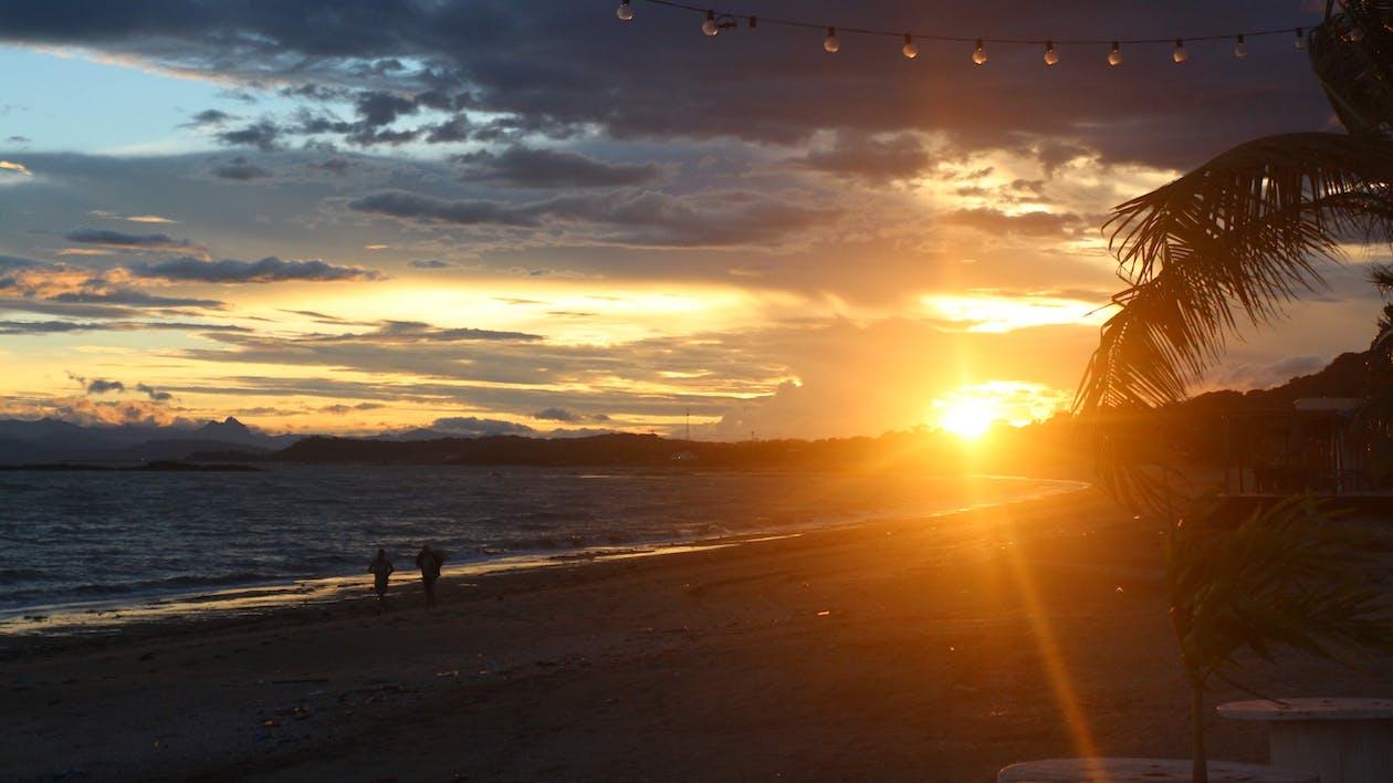 日落, 海灘, 漂亮