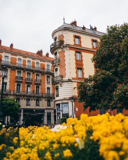 外観, 家, 建物, 建築の無料の写真素材