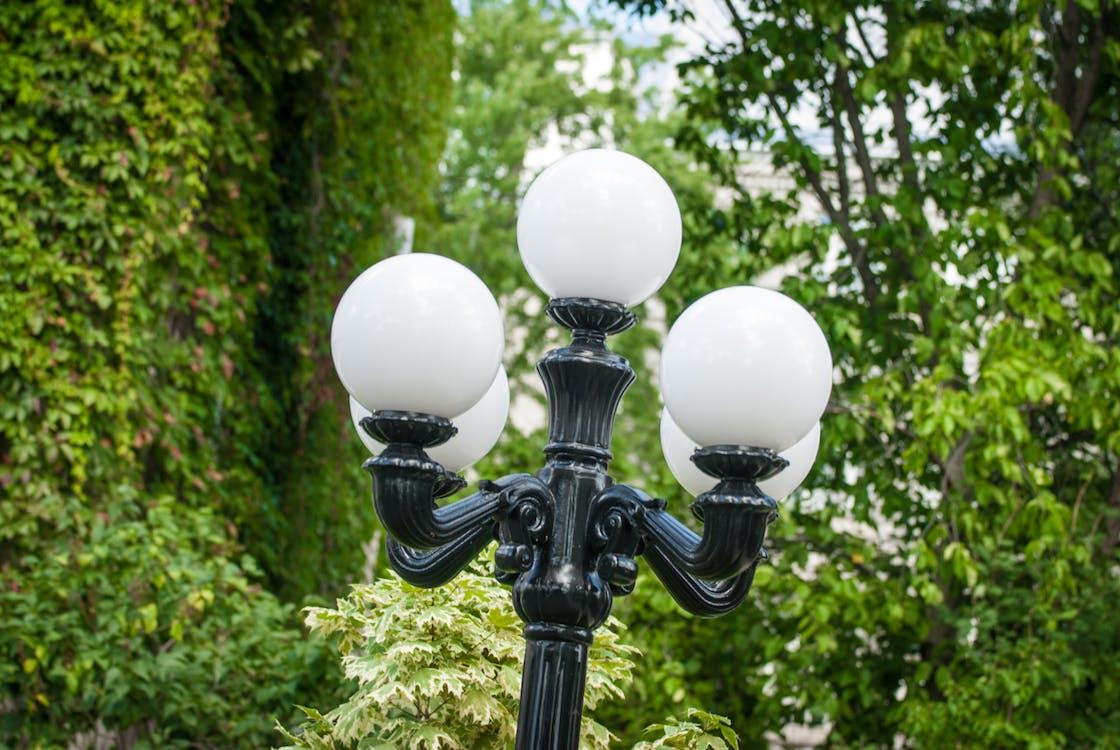 Free stock photo of lamp post