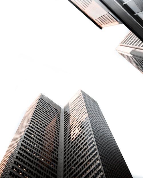低角度拍攝, 商業, 市中心, 市容 的 免费素材照片