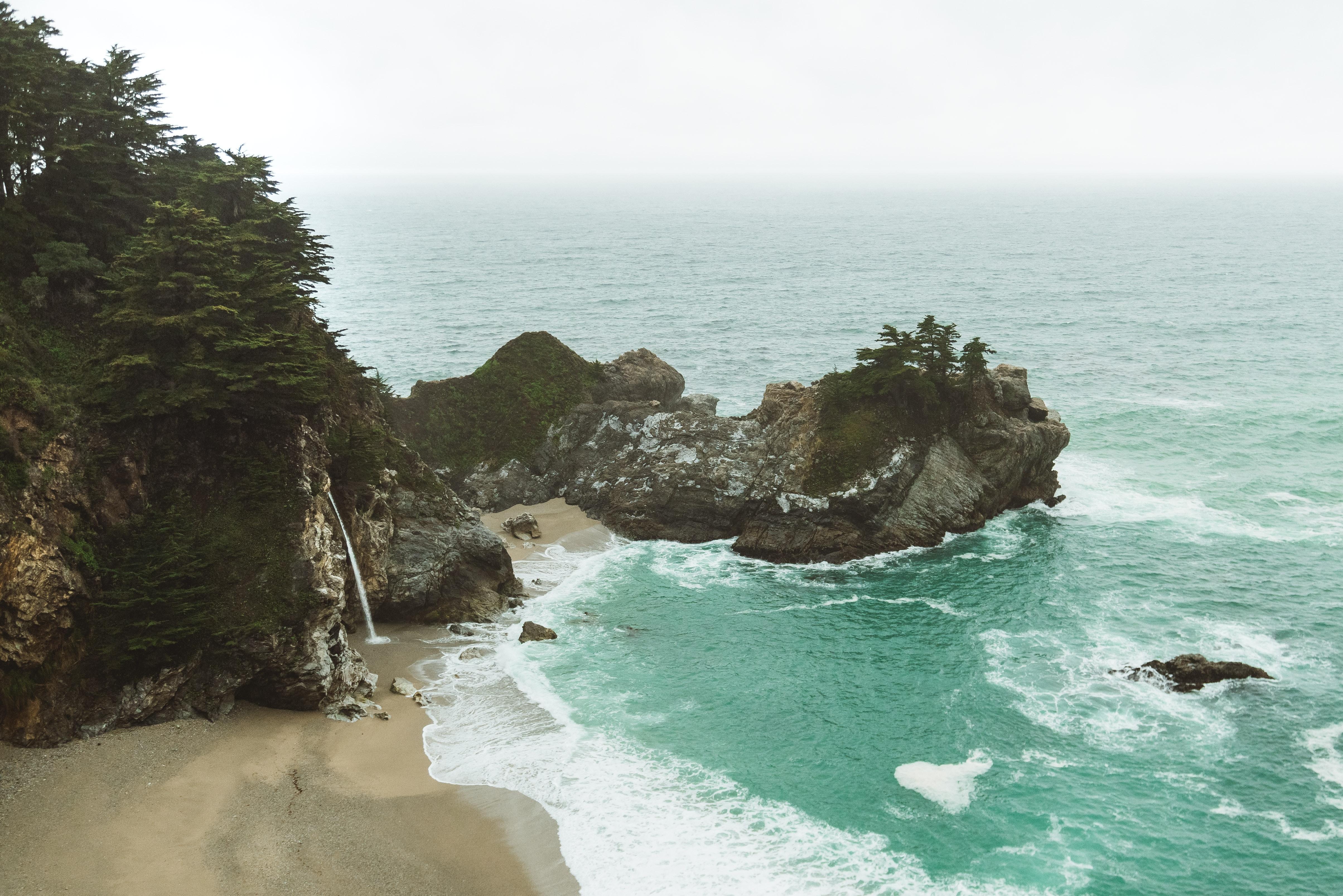 Green Trees on Sea Cliffs \u00b7 Free Stock Photo