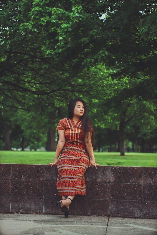 Бесплатное стоковое фото с деревья, дневной свет, досуг, женщина