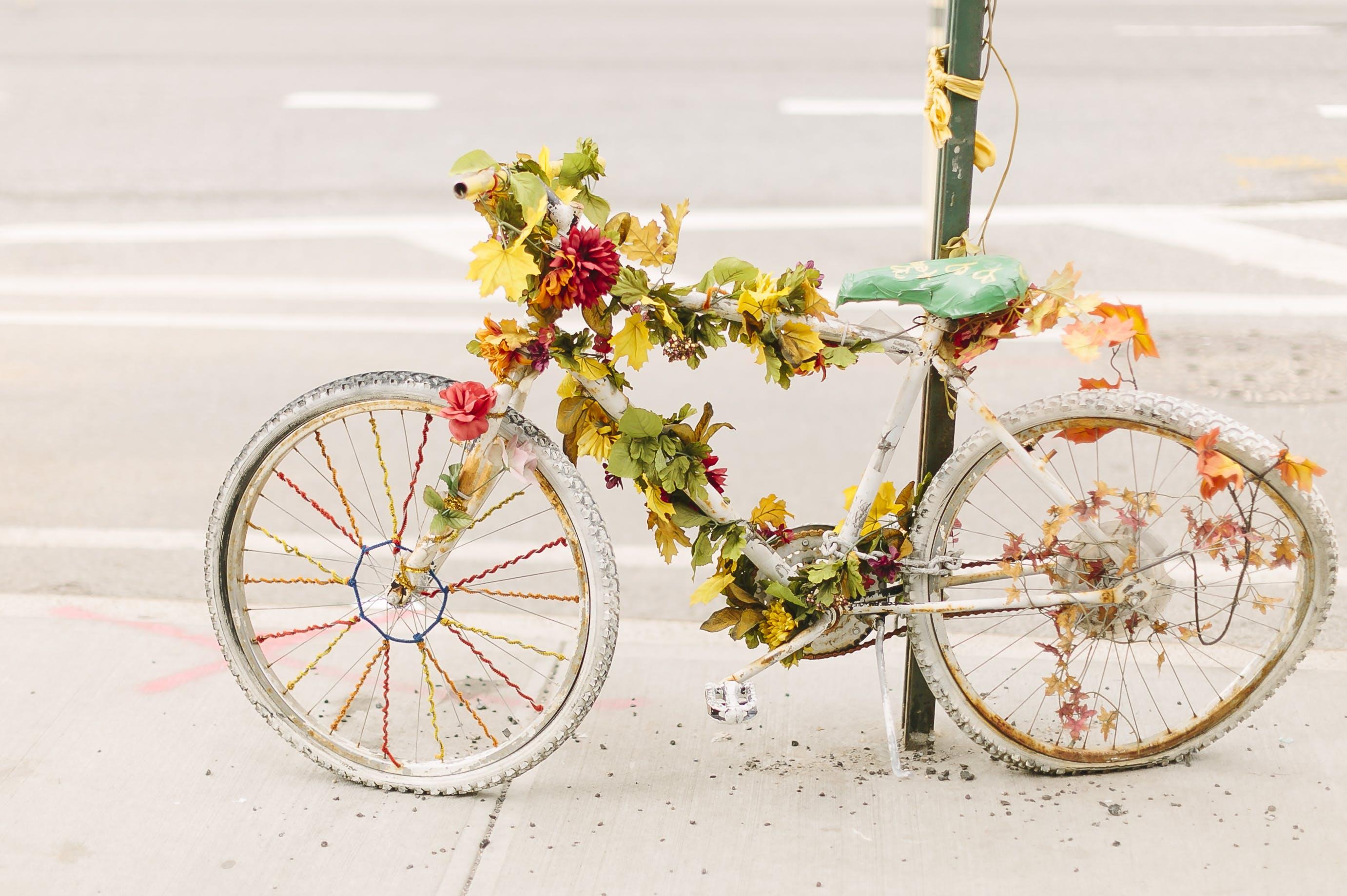 Free stock photo of beautiful, bicycle, bike, bike memorial