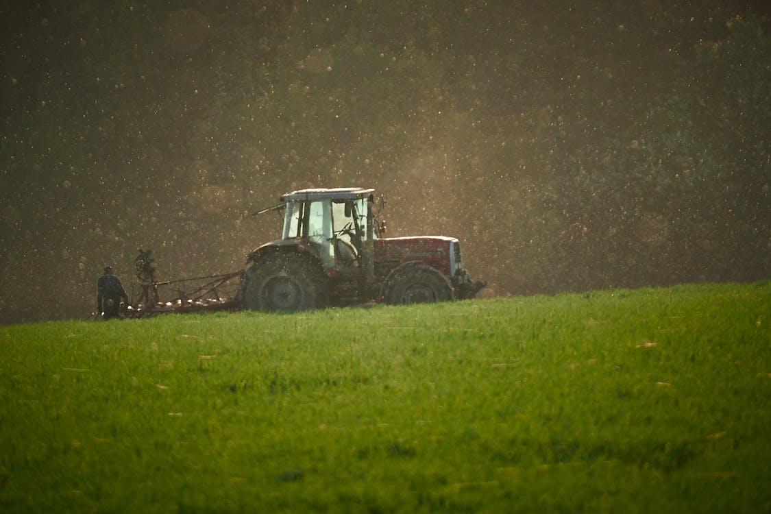 agricultura, al aire libre, campo