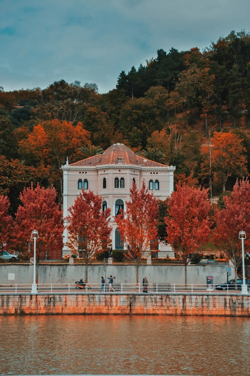Building Surrounded By Autumn Trees