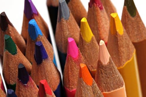 Free stock photo of art, artistic, bright
