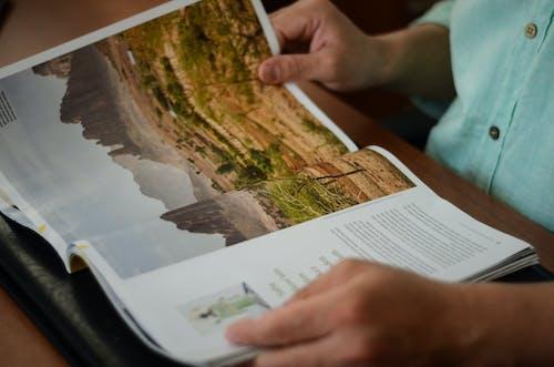 Imagine de stoc gratuită din articol, citind, hârtie, în interior