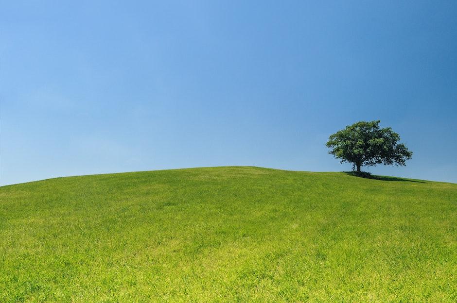 eco, green, hill
