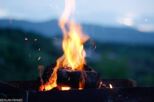 壁爐, 天性, 火, 火堆 的 免费素材照片