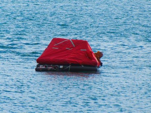 Free stock photo of abri, mer, naufrage