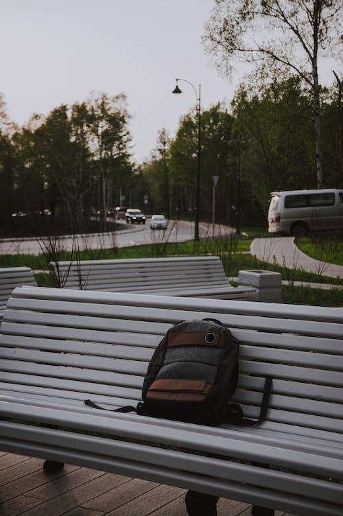 Základová fotografie zdarma na téma auta, batoh, citát, krása