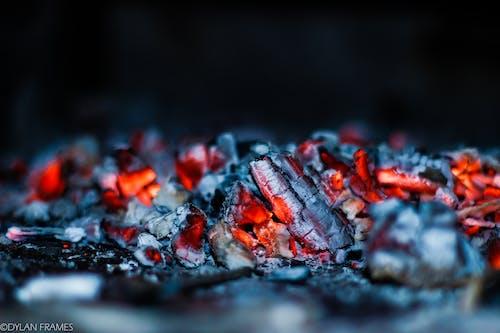 佳能, 木炭, 火, 火堆 的 免费素材照片