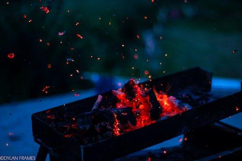 佳能, 库尔德斯坦, 木炭, 火 的 免费素材照片