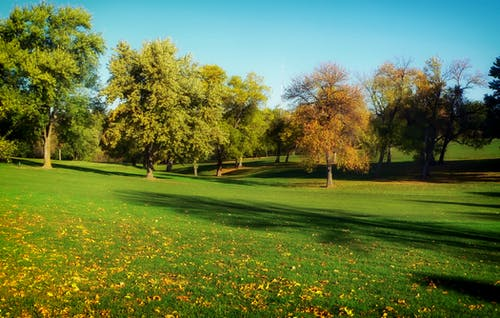Photos gratuites de arbres, golf, herbe, nebraska