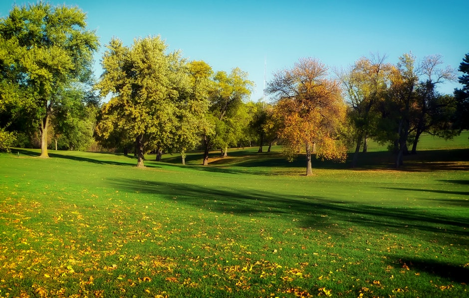 autumn, fall, golf