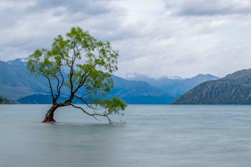 Fotobanka sbezplatnými fotkami na tému exteriéry, hory, jazero, krajina