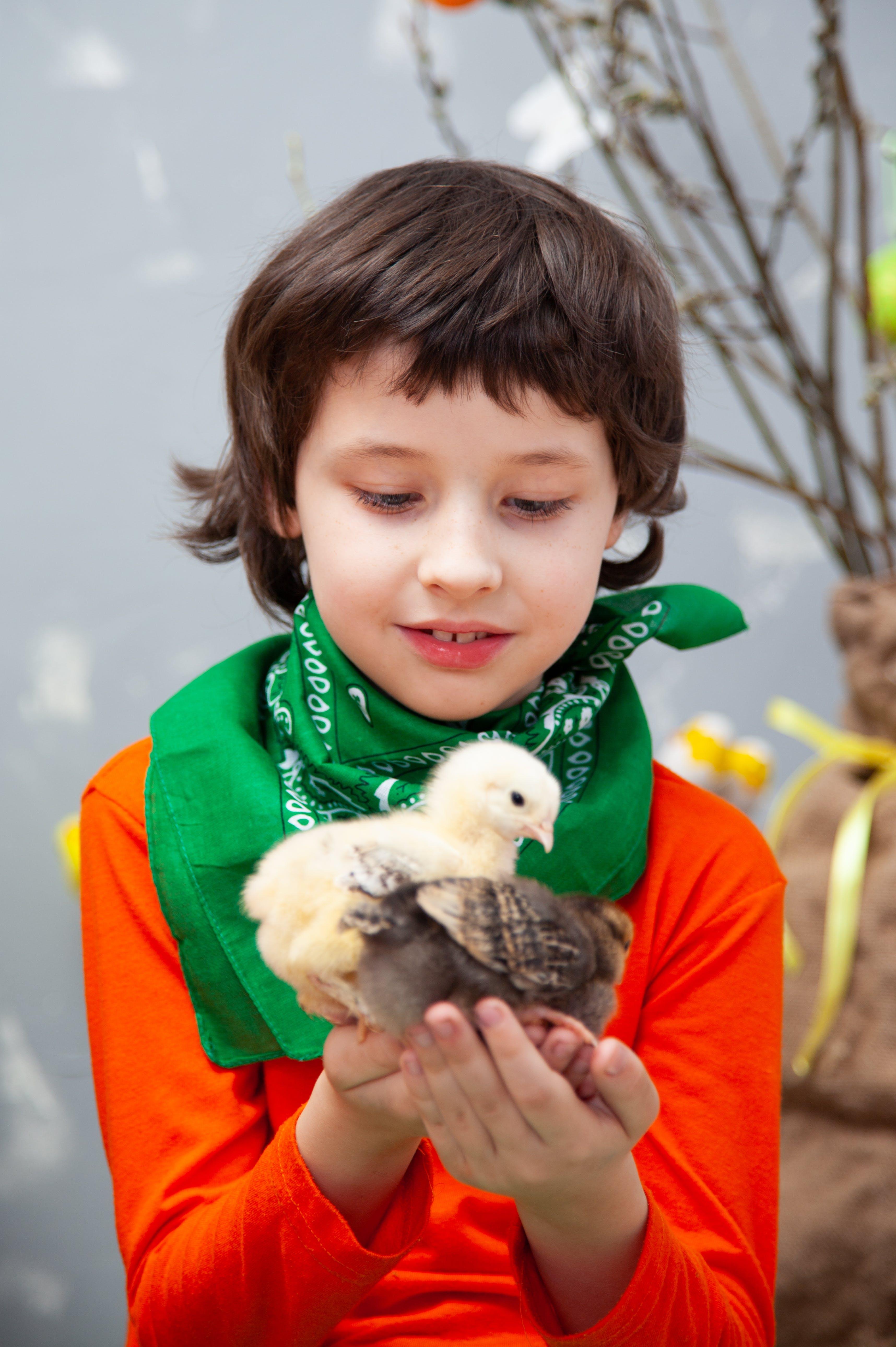 Boy Holding Birds