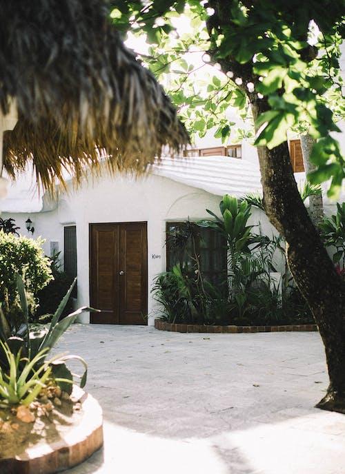 Immagine gratuita di architettura, casa, porta