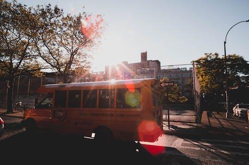 คลังภาพถ่ายฟรี ของ ถนน, พาหนะ, รถบัส, รถโรงเรียน