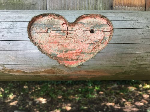 Free stock photo of #nature, bench, heart, park