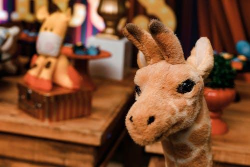 Darmowe zdjęcie z galerii z makro, pluszowa zabawka, wypchana zabawka, wypchane zwierzę