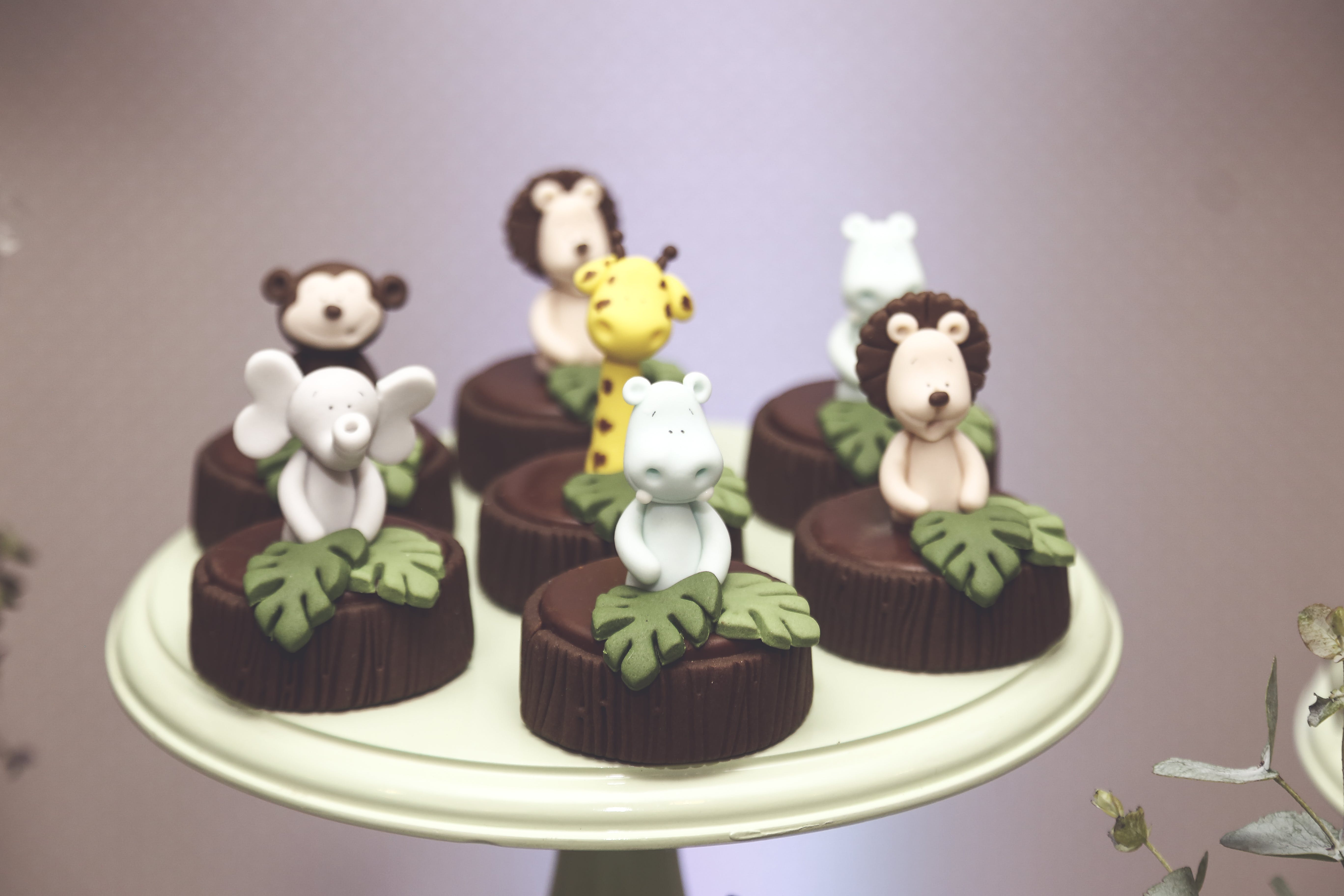 Round Chocolates With Animals Decorated On Top