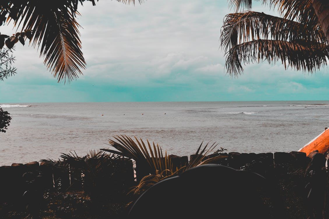 jonas androx, playa, ชายหาด