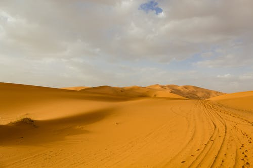 Free stock photo of desert, dunes, morocco, sand