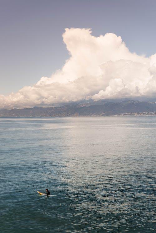 Základová fotografie zdarma na téma denní světlo, krajina, léto, los angeles