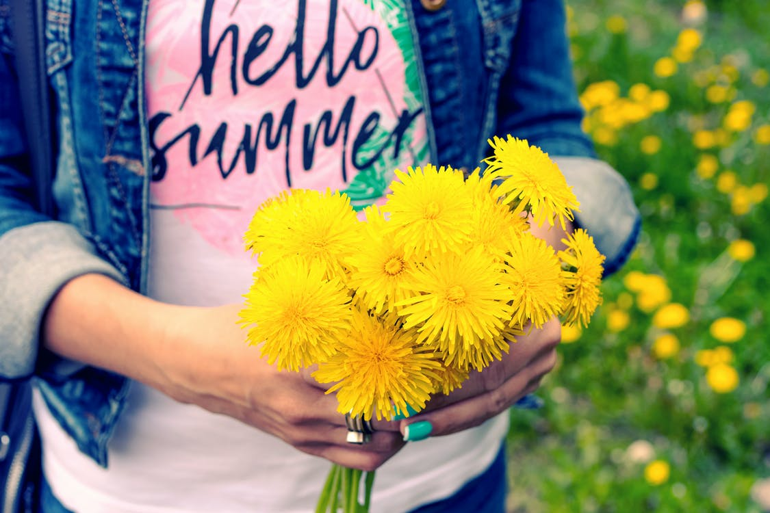 Person Holding Blooming Yellow Daisy Flowers