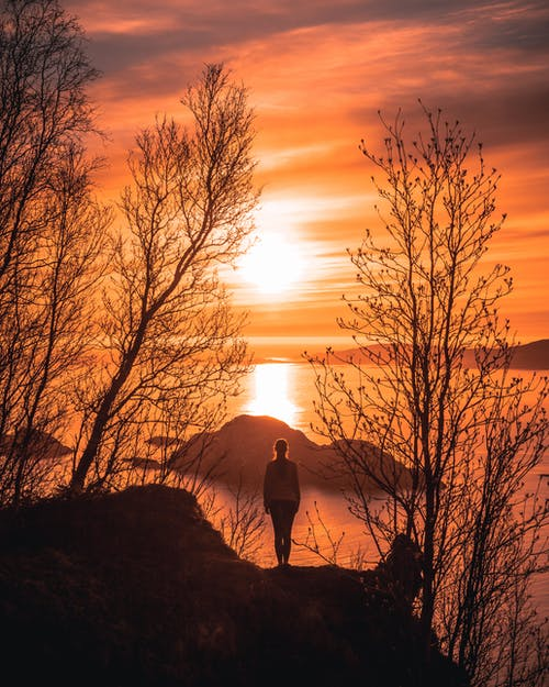 Woman Standing on Cliff Beside Trees during Sunset