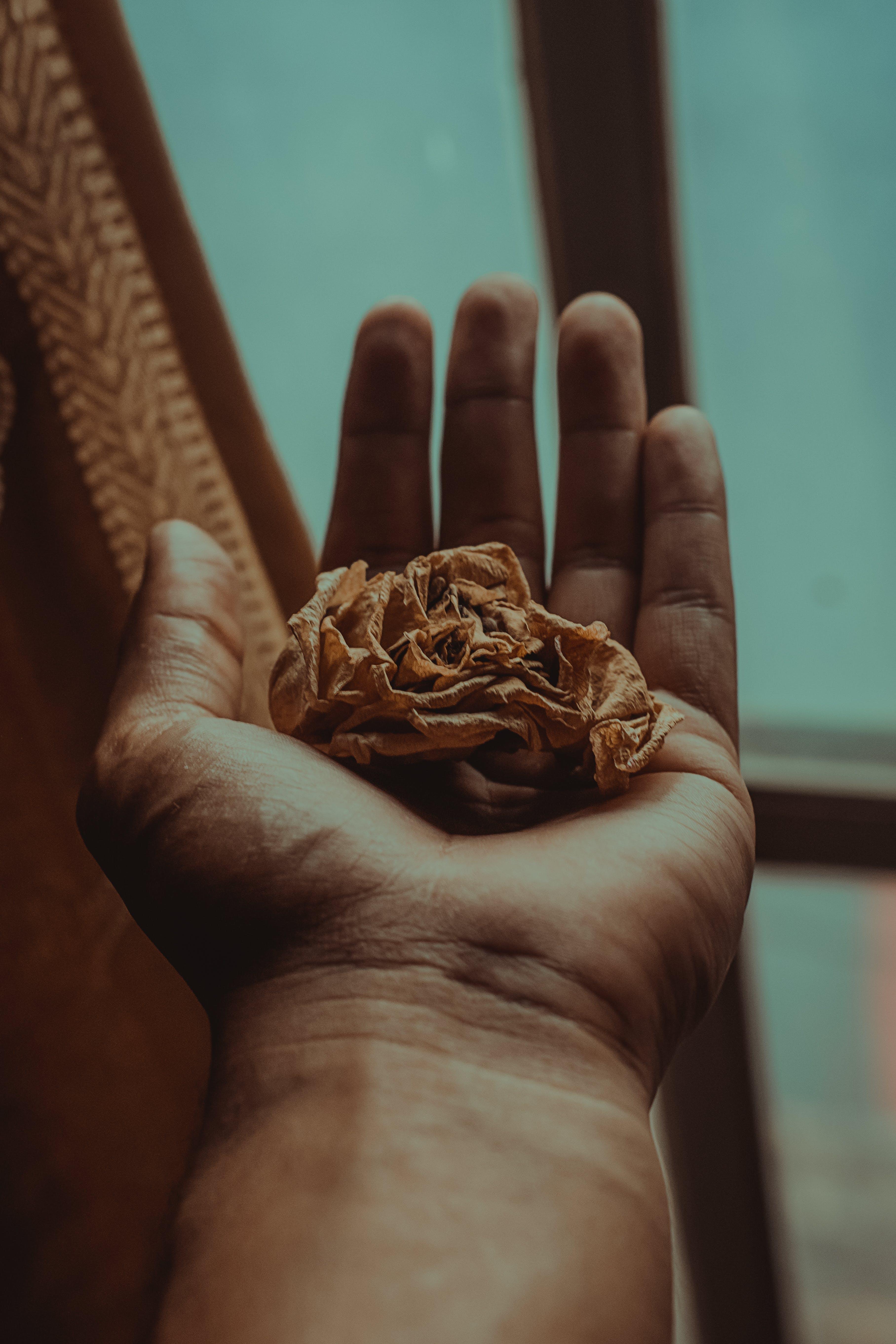 Darmowe zdjęcie z galerii z papierowa chusteczka, ręka, zmięty