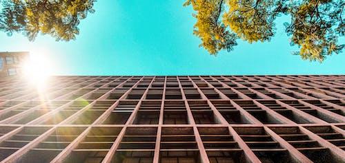 公寓樓, 太陽, 廢棄的建築, 樹木 的 免費圖庫相片