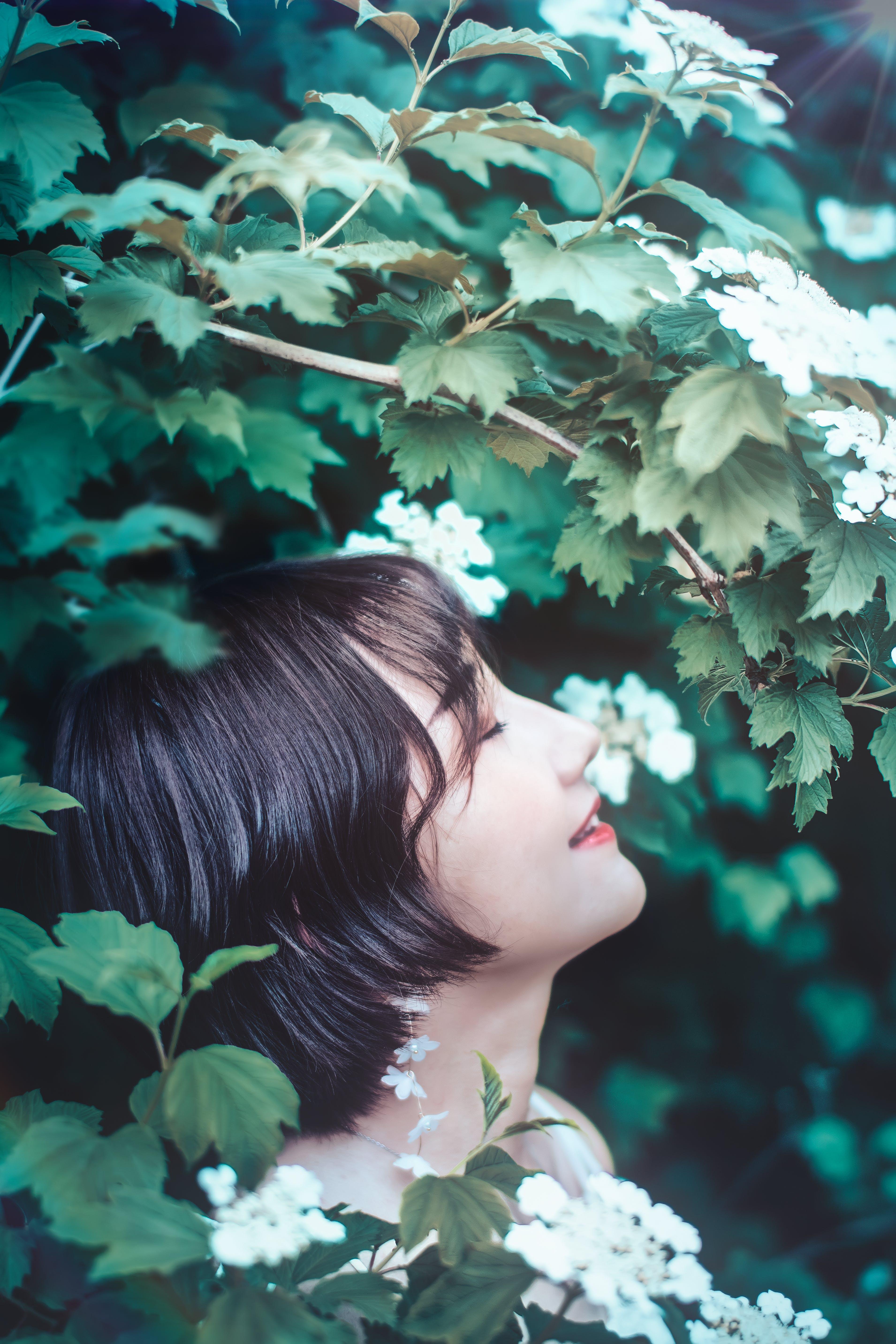 Foto stok gratis bagus, bunga, cewek, cute