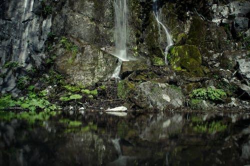 Free stock photo of brownstones, dark green, rocks