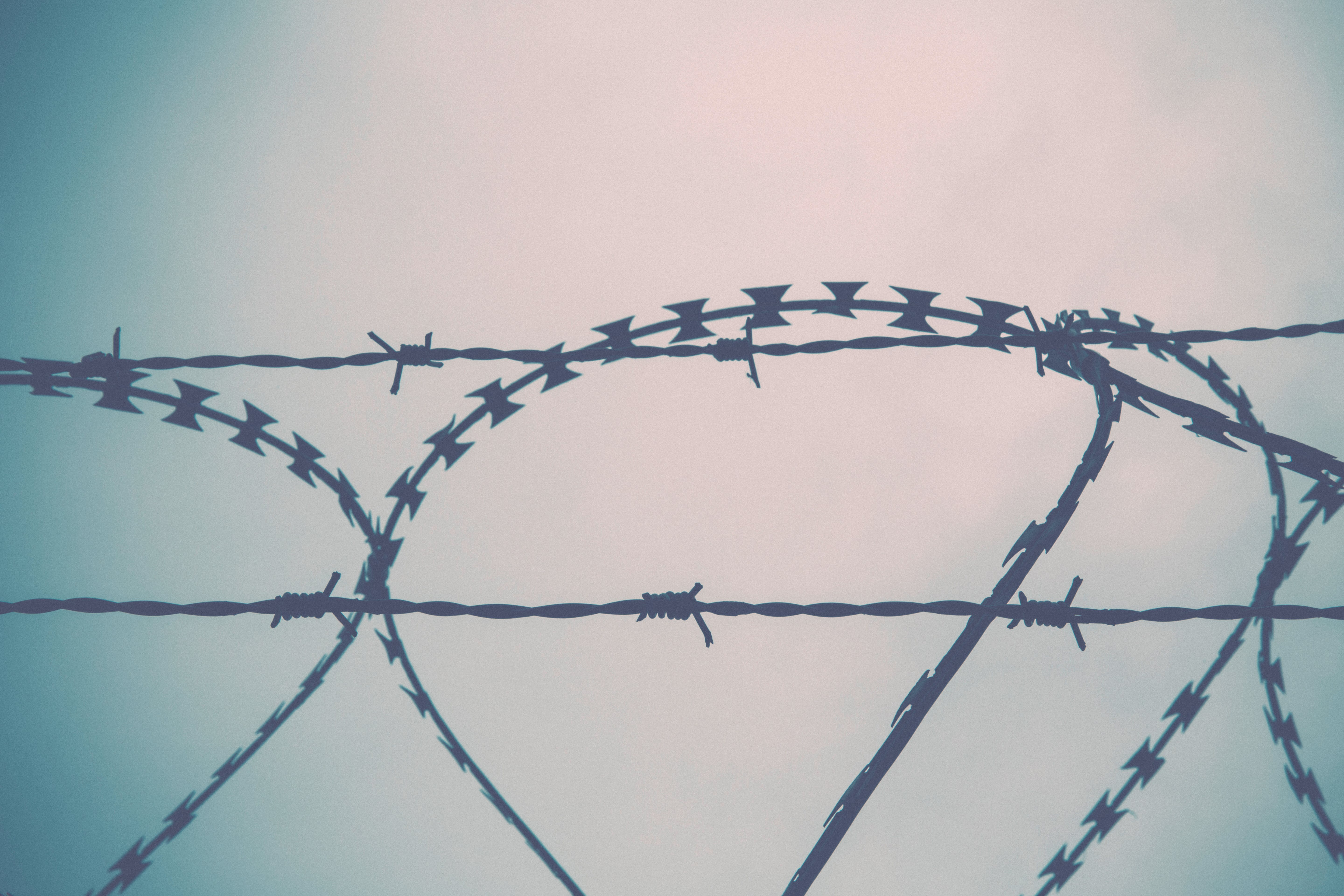 Free stock photo of line, range, border, barbed wire