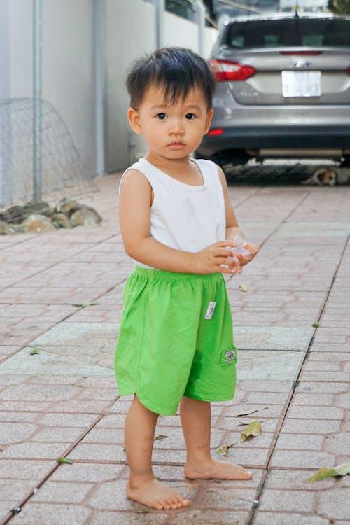 Základová fotografie zdarma na téma asijský kluk, batole, chlapec, dětství