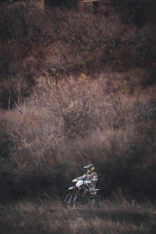 #자연, 바이커, 산, 산악 자전거 타는 사람의 무료 스톡 사진