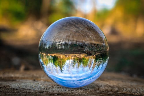 Free stock photo of forest, Lensball