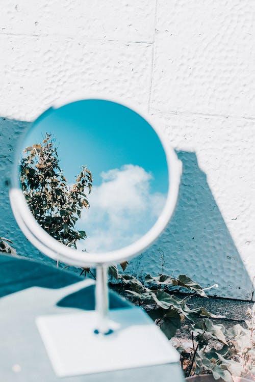 Бесплатное стоковое фото с дерево, дизайн, дневной свет, зеркало