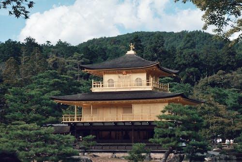 Immagine gratuita di alberi, architettura, edificio, pagoda