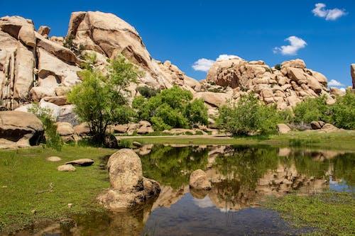 Immagine gratuita di arenaria, esterno, montagna, natura