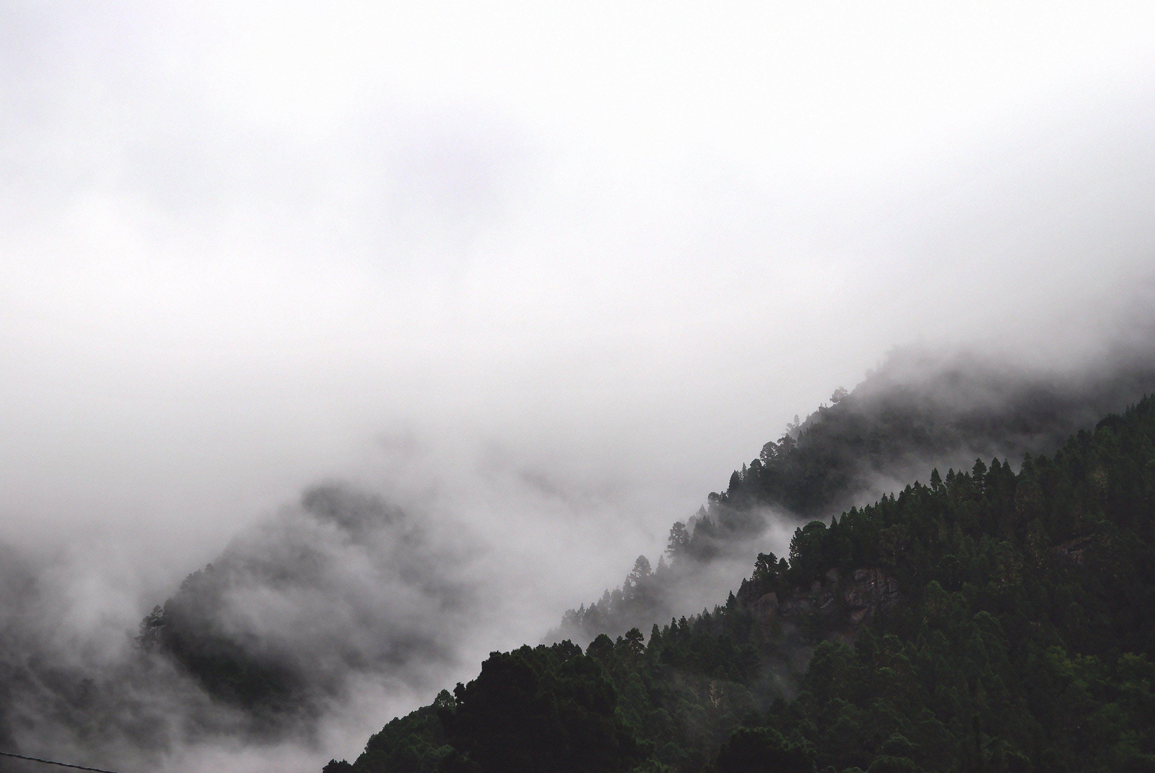 Základová fotografie zdarma na téma černobílá, černobílý, hory, krajina