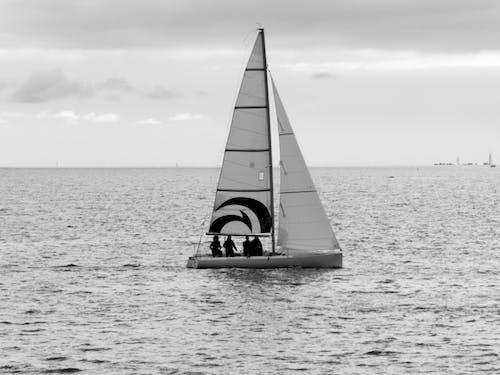 Free stock photo of bateau, eau, loisir