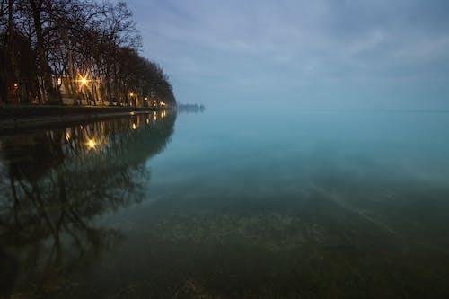 Imagine de stoc gratuită din albastru, apă, apă albastră, arbore