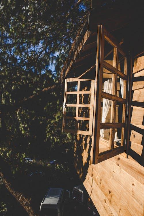 Foto d'estoc gratuïta de a l'aire lliure, arbres, cabana, casa