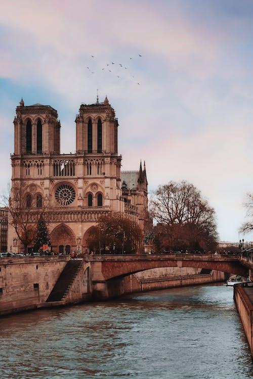 Fotos de stock gratuitas de agua, arboles, arquitectura, catedral