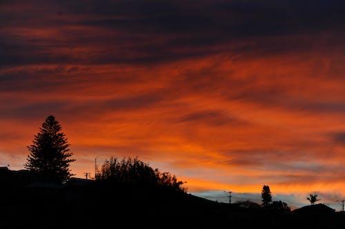 ağaçlar, ateşli gökyüzü, Avustralya, gökyüzü içeren Ücretsiz stok fotoğraf