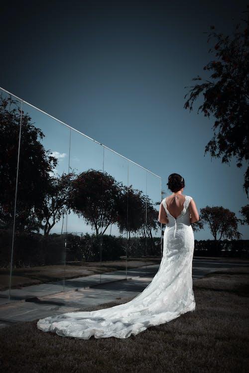 Δωρεάν στοκ φωτογραφιών με άνθρωπος, αντανάκλαση, αυγή, γαμήλια τελετή