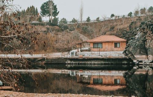 Gratis stockfoto met architectuur, bomen, buiten, buitenkant
